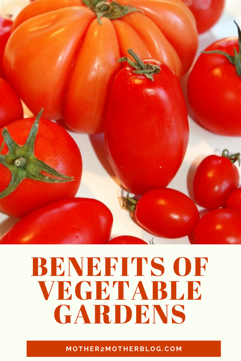 benefits of vegetable gardens