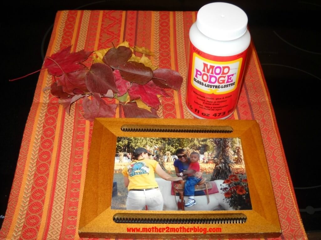 modge podge projects, fall picture frames