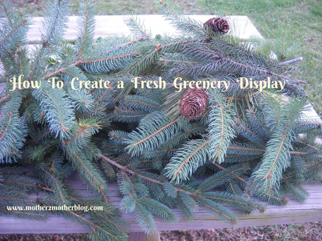 fresh Christmas greenery, greeney display, Christmas displays