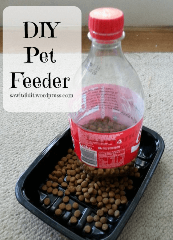 pet ideas, pet feeders,
