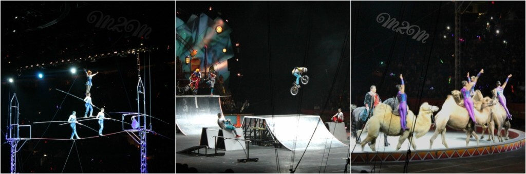 Xtreme circus,
