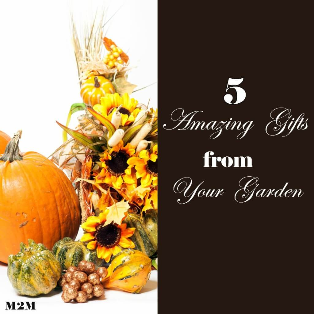 garden gift ideas, gifts for gardeners