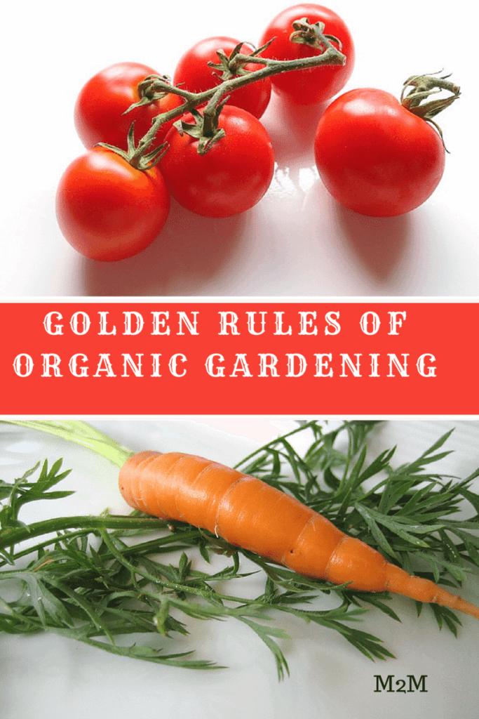 gardening, vegetable gardens