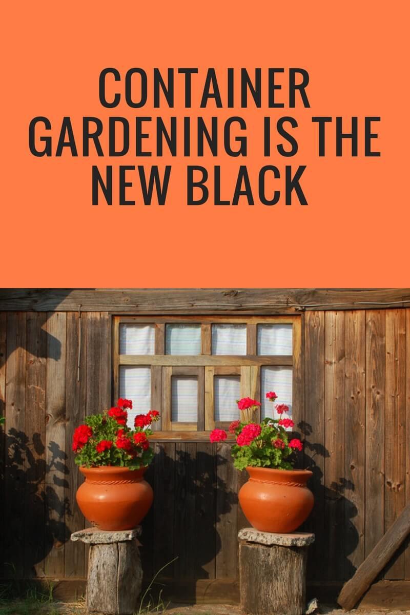 gardening, flower gardens, container gardens