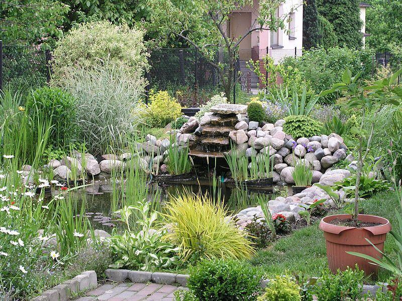 gardening, garden ideas,