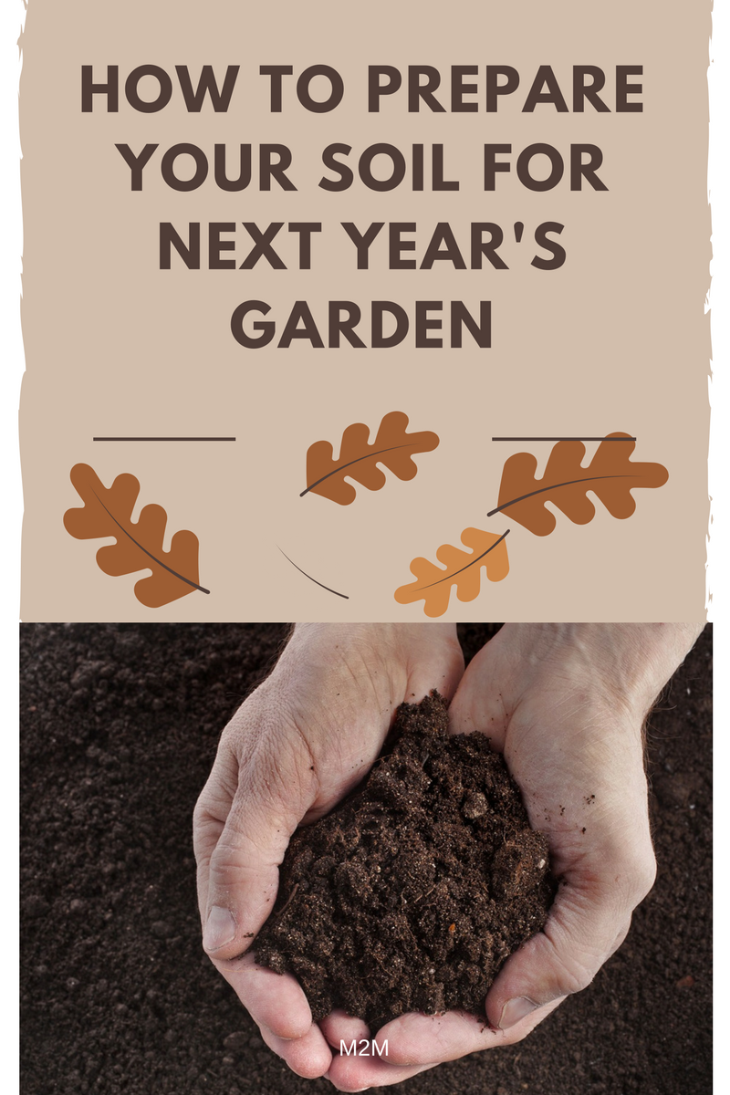 How to prepare your soil for next year 39 s garden for Soil 2 year pgdm