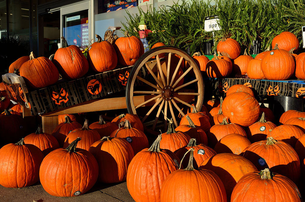 halloween crafts, halloween gifts