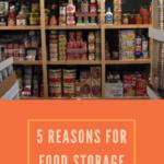 dried food storage tips