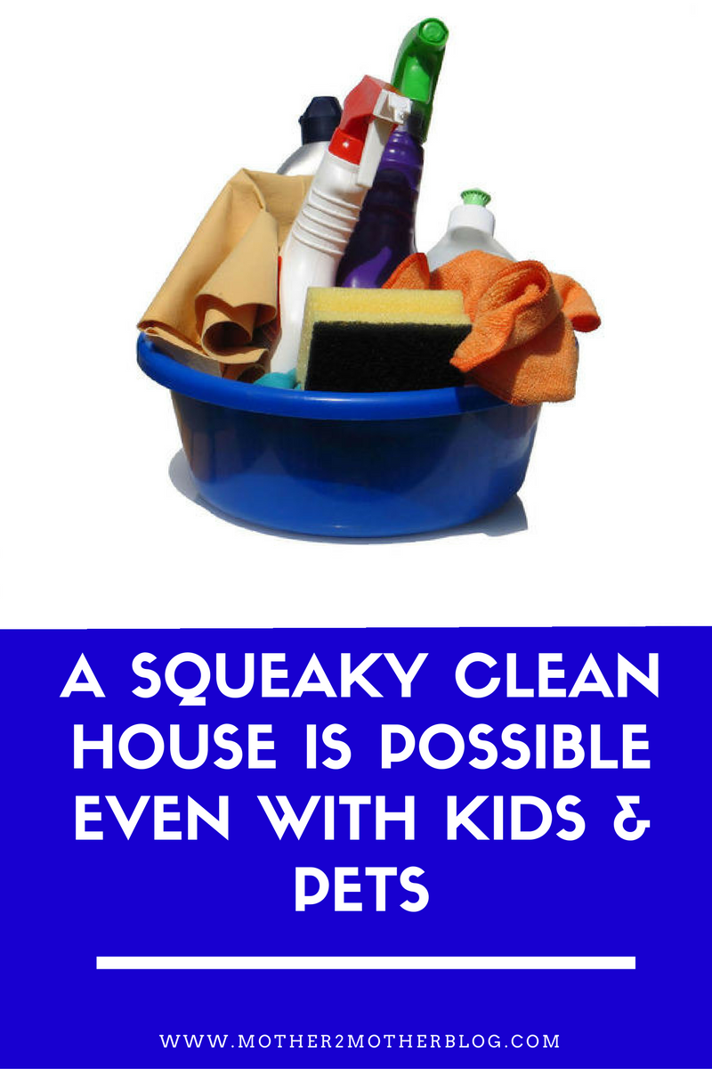 a-squeaky-clean-house-is-possible