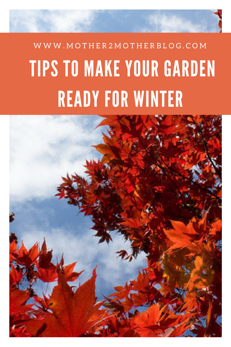 tips to winterize your garden