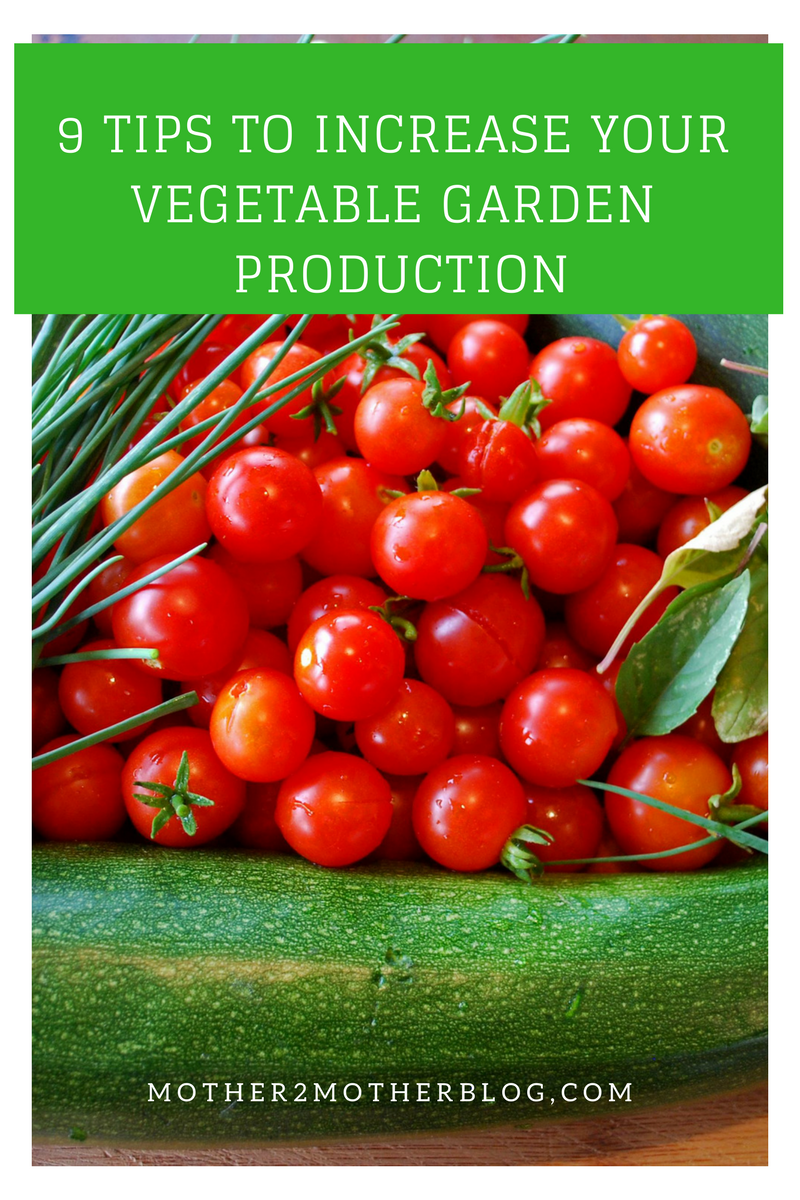 how to increase vegetable garden production