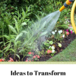 ideas to transform your garden