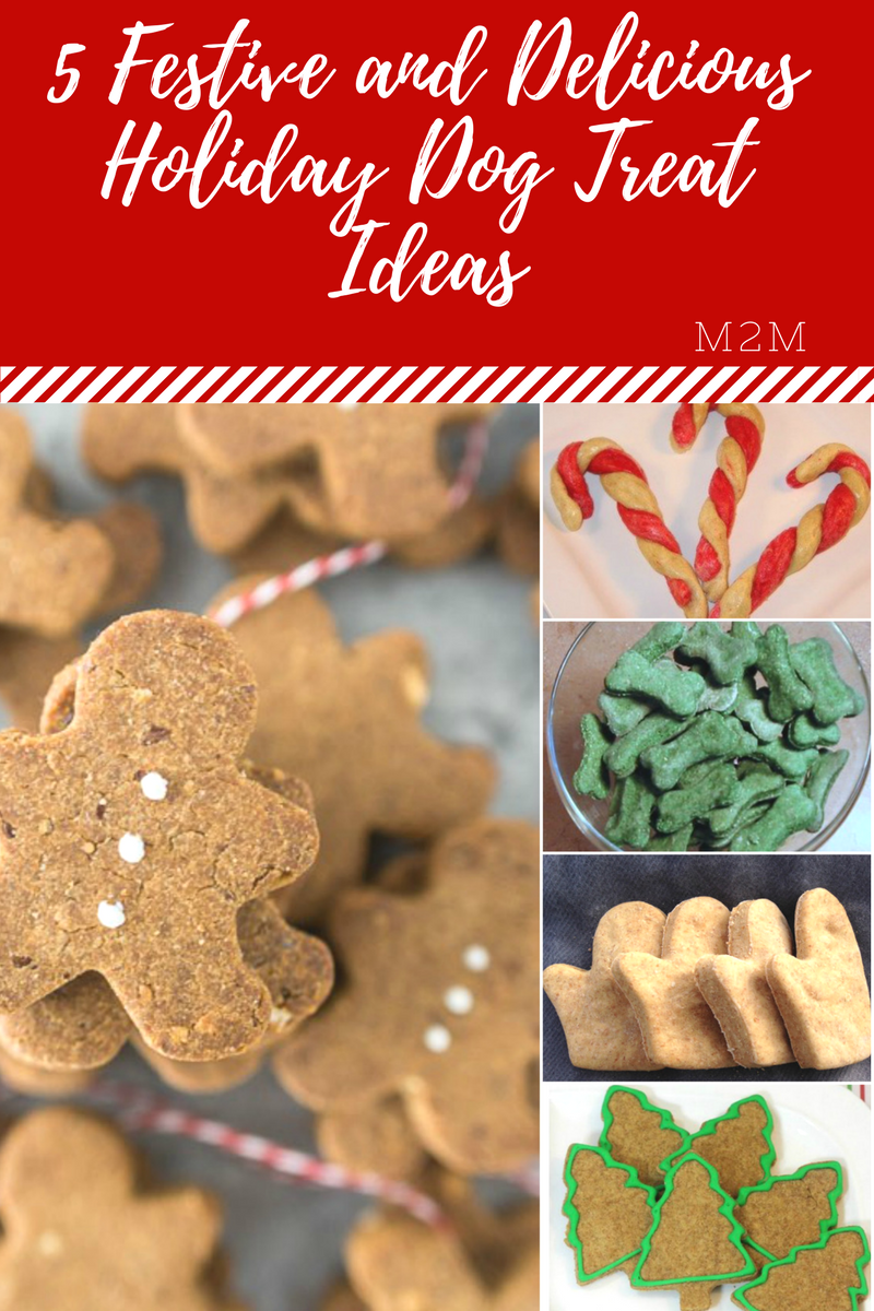Week 155 - 5 Festive and Delicious Holiday Dog Treat Ideas from Mother 2 Mother